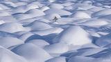 Alberta, Canada, Determination