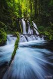 Lower Panther Creek Falls, Washington, Panther Creek, Panther Creek Falls, Frigid Panther, horsetail, Waterfall, Creek, Frigid