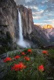 Yosemite Falls, Yosemite National Park, California, Yosemite, National Park, Park, Falls, Sierra Nevada, Sierra, Waterfall, upper fall, lower fall, water flow, patience