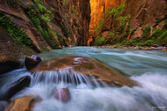 Zion National Park, Utah, A Place of Wonder, Colorado River, Virgin River, Slot Canyon