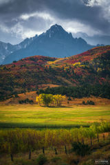 Ridgway, Colorado, King of the Hill, Aspen Trees, San Juan Mountains