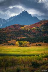 Ridgway, Colorado, King of the Hill, Aspen Trees, San Juan Mountains