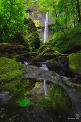 Elowah Falls, Oregon, Mirrored Beauty, Columbia Gorge, John B. Yeon State Scenic Corridor, Waterfalls