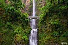 Multnomah Falls, Oregon, Multnomah, Columbia River Gorge, Falls, Columbia River, River, Gorge, Multnomah Creek, Waterfall
