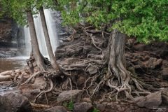 Gooseberry Falls State Park, Minnesota, Lake Superior, North Shore, Two Harbors, Gooseberry River, My Roots Run Deep