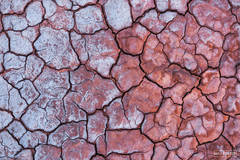Death Valley National Park, California, Salt of the Earth, Salts, Dry Lake, Mudcracks, Cracked Mud