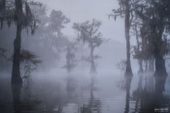 Caddo Lake, Texas, The Illusion, Louisiana