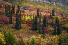 Arrigetch Peaks Wilderness, Gates of the Arctic National Park, Alaska, The Red Carpet