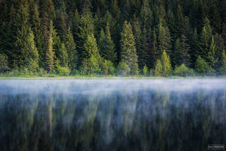 Trillium Lake, Oregon, Lake, Emerald Essence, Evergreen Tree