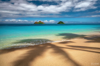 Lanikai Beach, Oahu, Hawaii, Palm Trees, Daydreams, Kailua