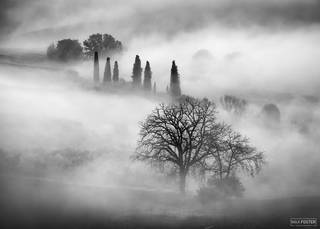 Val d'Orcia, Valdorcia, Tuscany, Italy, Sleepy Hollow, Renaissance, Black and White