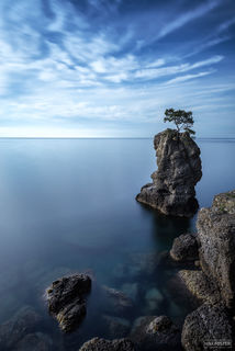 Portofino, Italy, The Lone Tree, Sea Stack