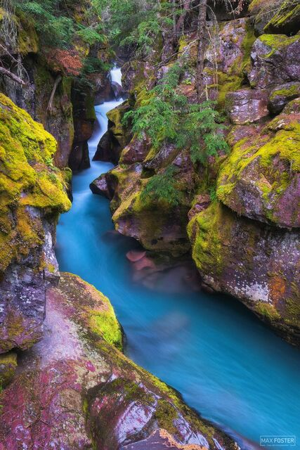 Glacier National Park, Montana, Avalanche Creek, Cerulean Serenade, Blue Creek
