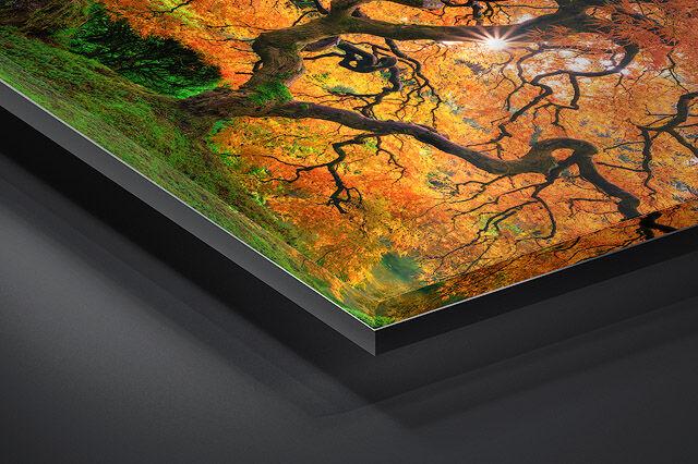 Gallery Ultra | Lumachrome TruLife® Acrylic Print | Ready to Hang