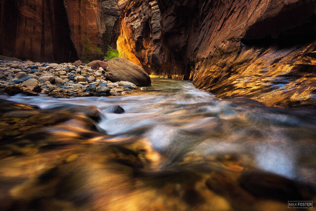 Zion National Park, Utah, Gold Rush, The Narrows, Slot Canyon