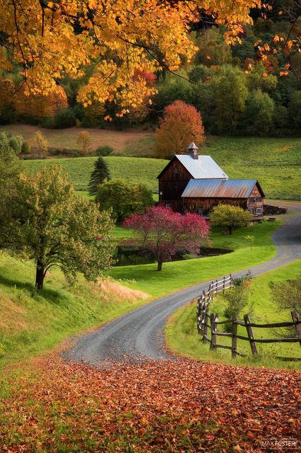 Woodstock, Vermont, Sleepy Autumn, Autumn, Fall, Leaves, Seasons, Shedding of Leaves