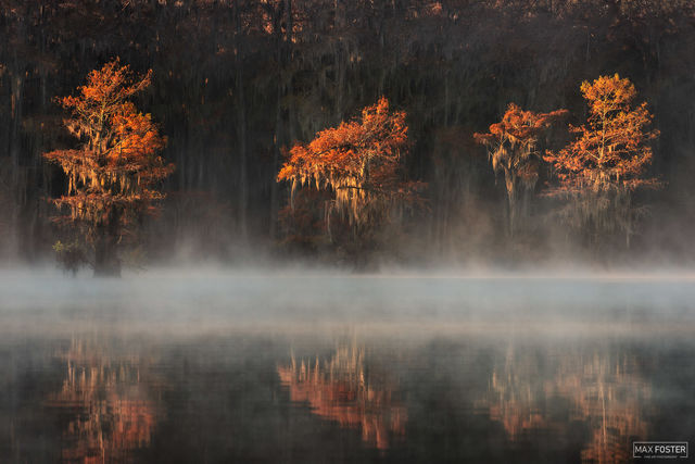 Caddo Lake, Texas, Smoke on the Water, Louisiana