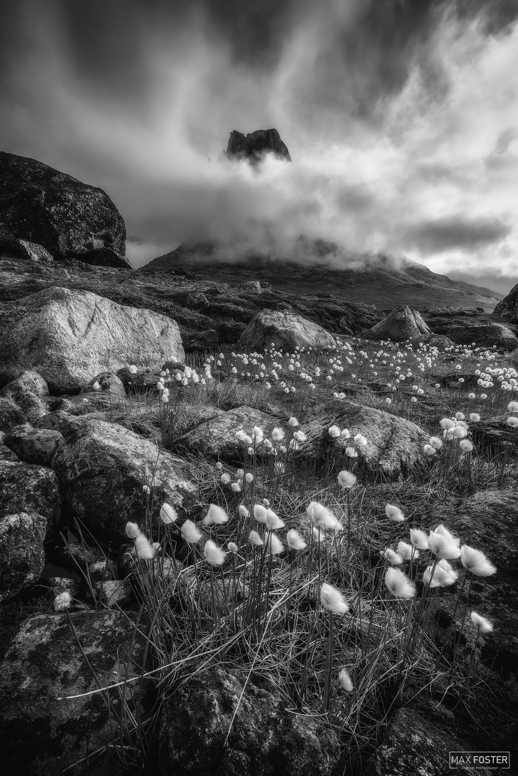 Fine Art Limited Edition of 50 The black and white or monochrome version of Arctic Cotton, taken in the mountains of Southern...