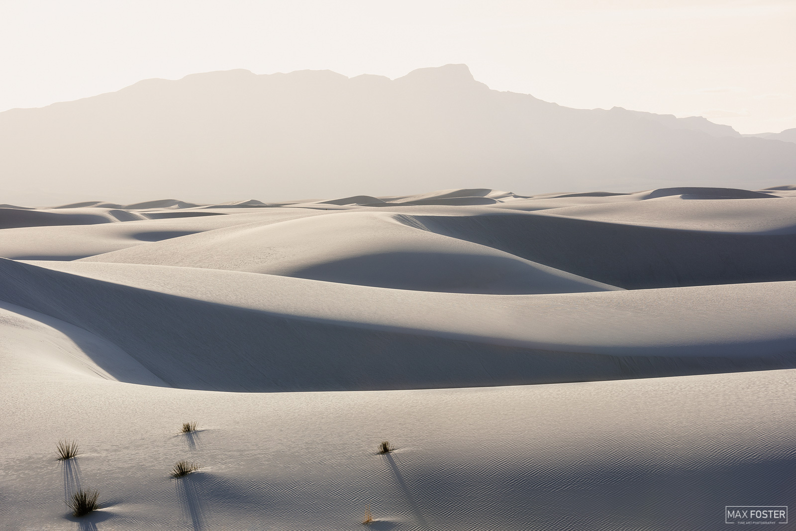 White Sands National Park, New Mexico, Barren Beauty, National Park, photo