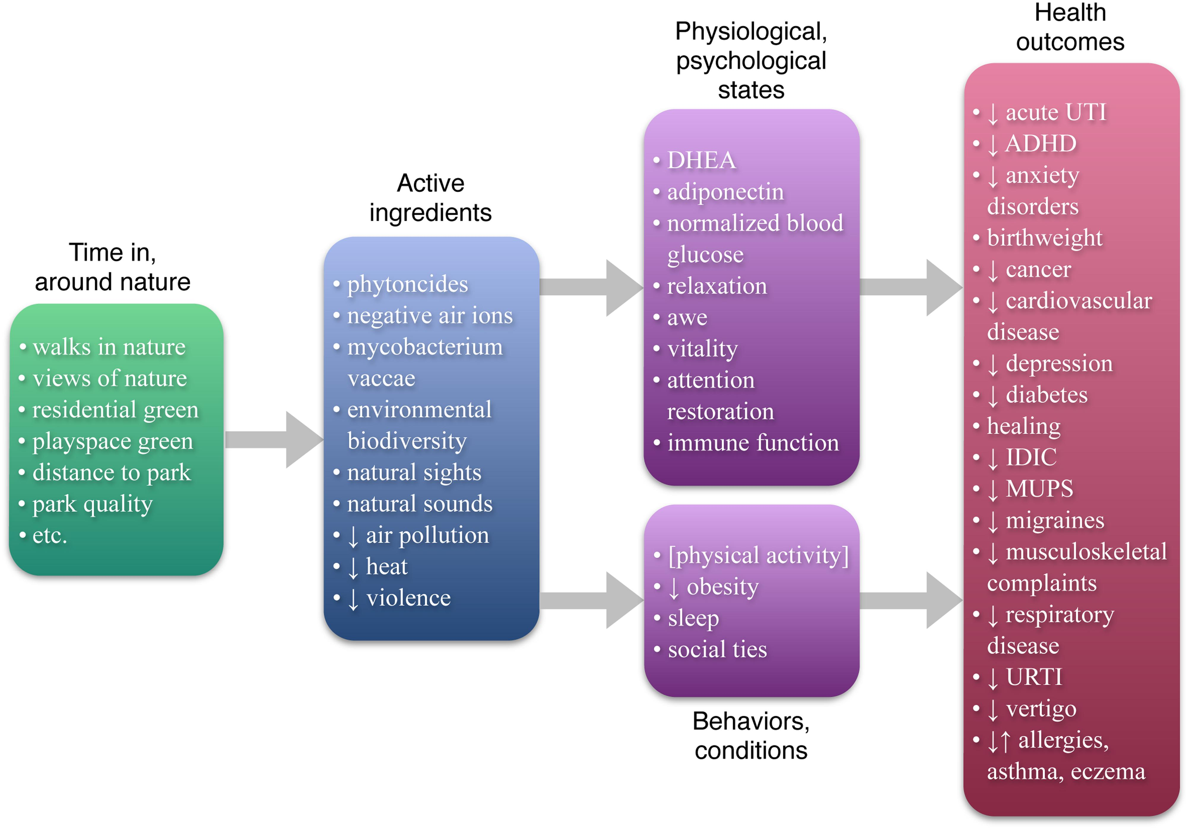 The Nature-Health Link from Frontiers in Psychology