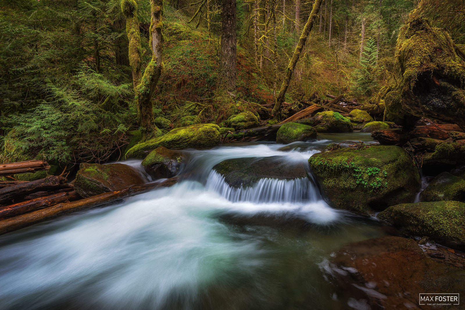Multnomah Creek, Oregon, Forest Harmony, Stream, Columbia River Gorge, photo