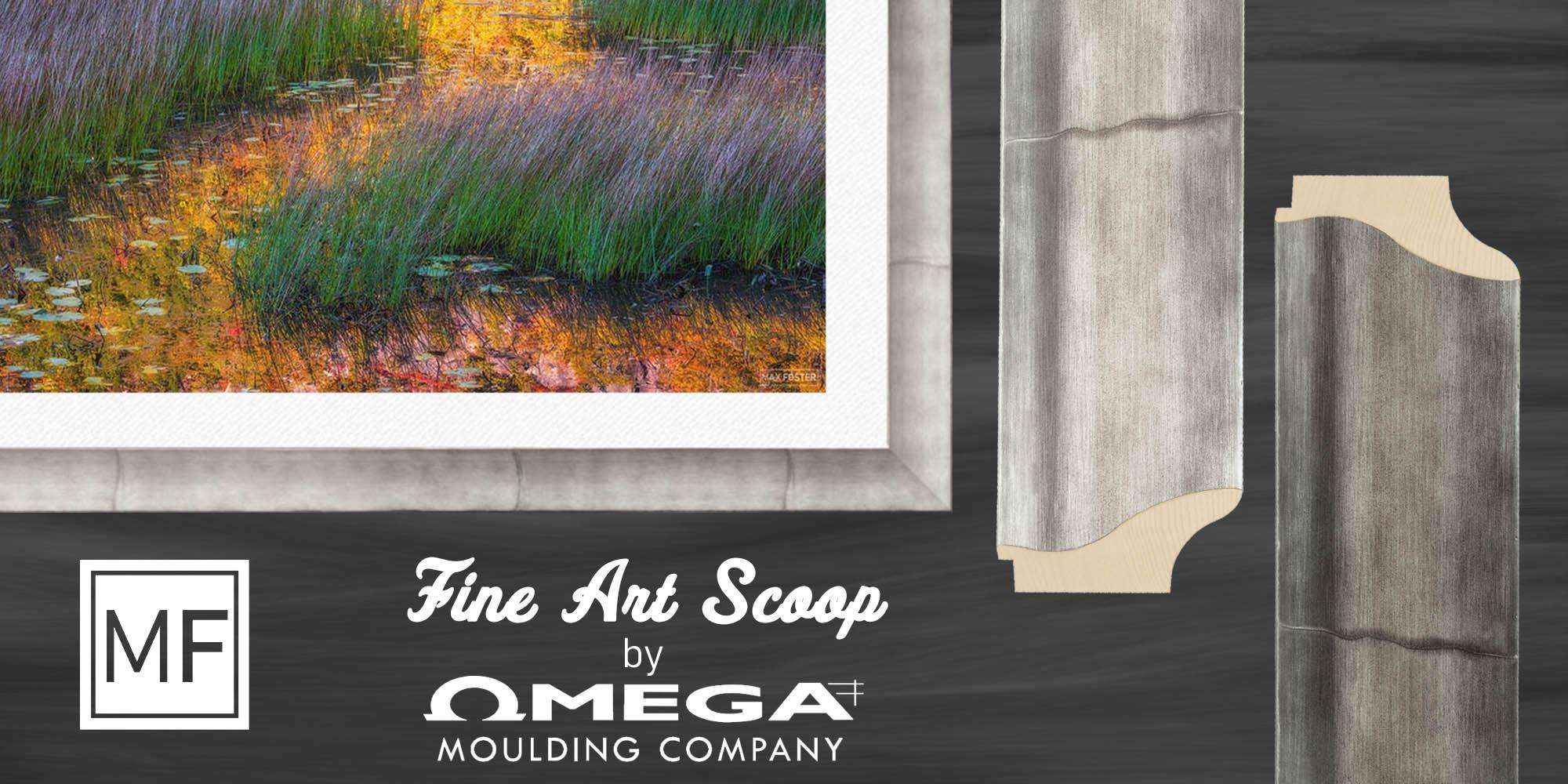Fine Art Scoop by Omega Moulding