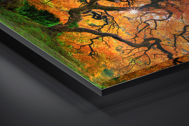 Gallery Ultra Lumachrome TruLife® Acrylic Print