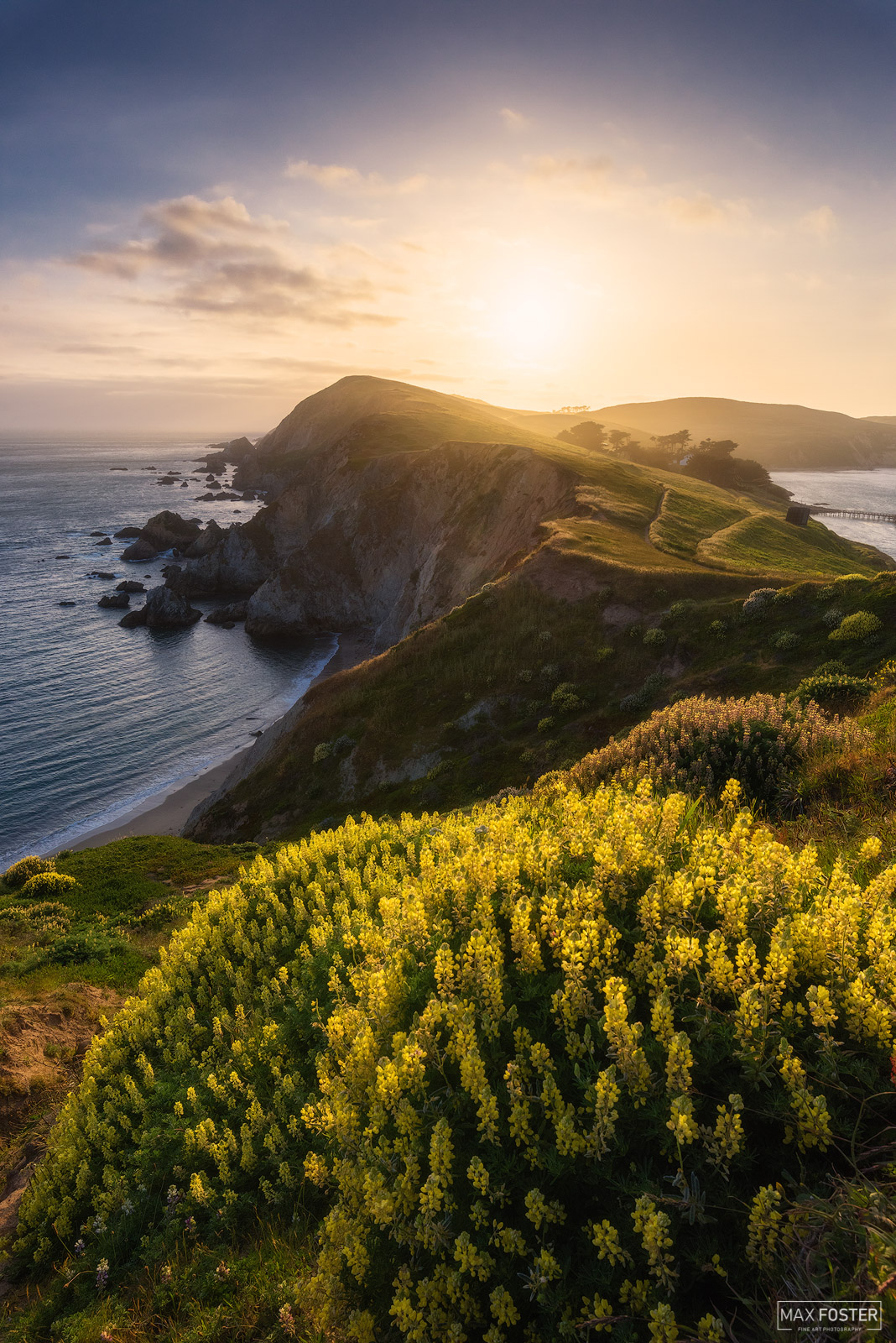 Point Reyes National Seashore, California, Golden Reyes, photo