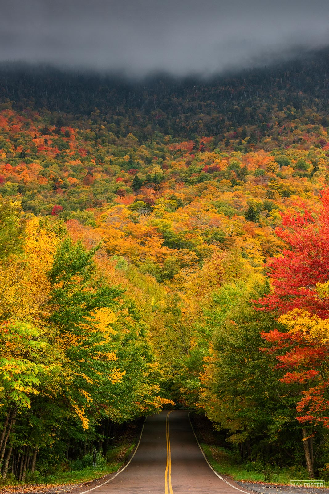 Smugglers Notch, Vermont, Into the Woods, Green Mountains, Lamoille County, Mount Mansfield State Forest, photo