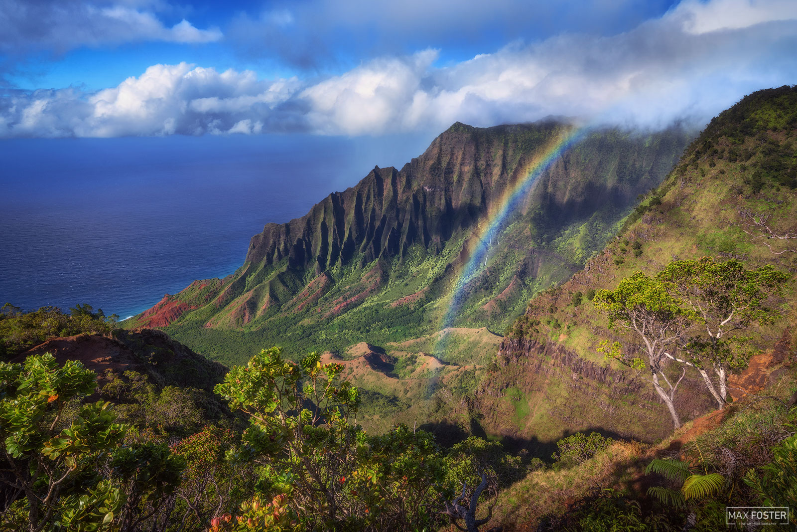 Fine Art Limited Edition of 100 Kōkeʻe State Park is located in northwestern Kauaʻi just north of Waimea Canyon State Park...