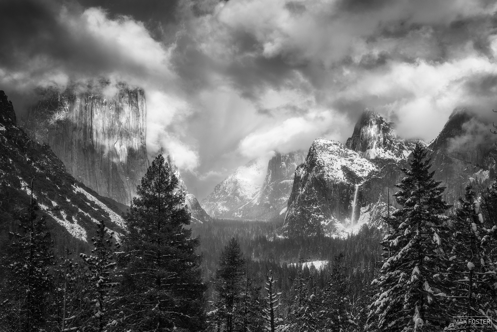 Yosemite National Park, California, Majestic Valley, Black and White, Monochrome, photo