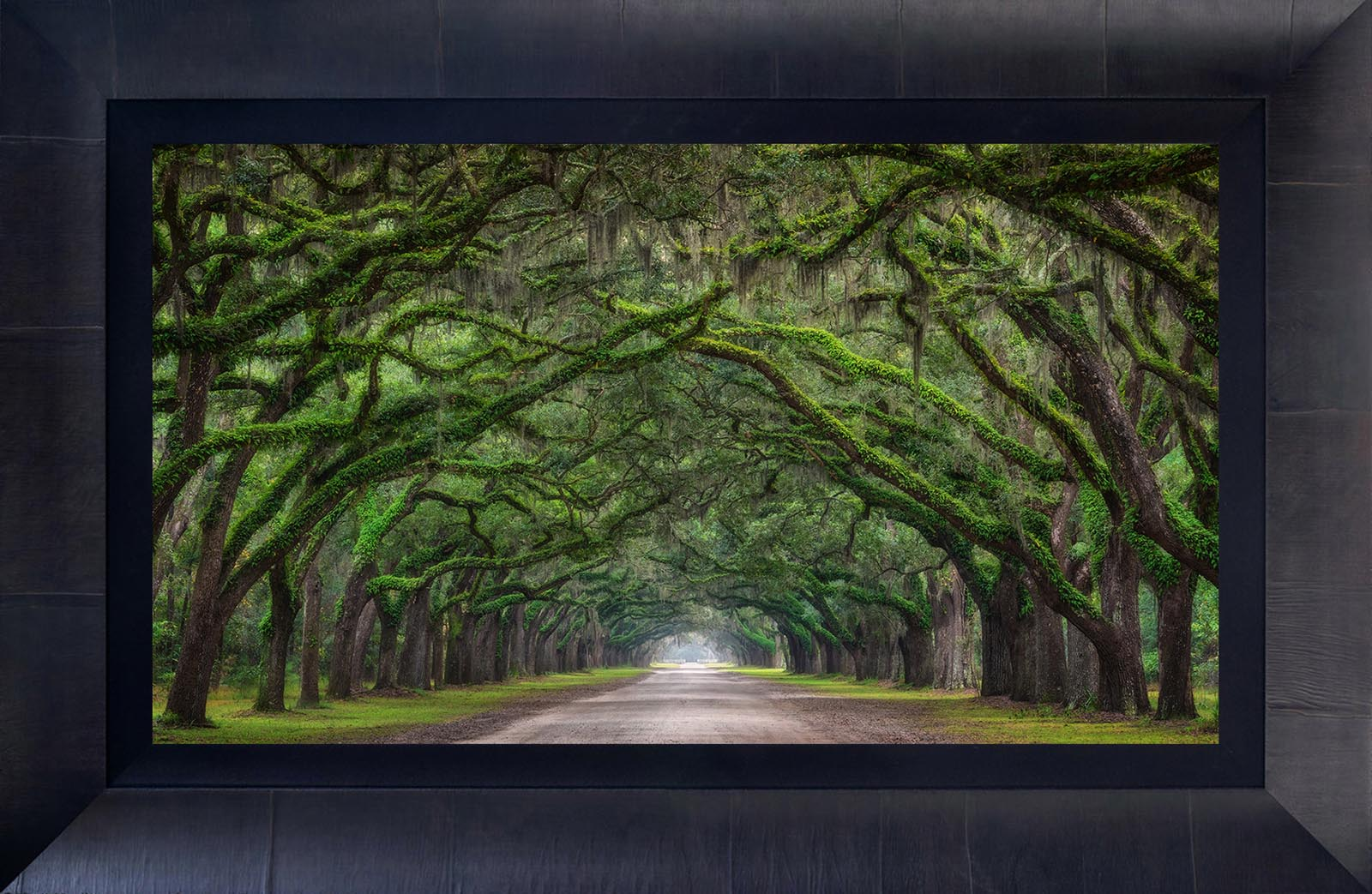 Large Format Fine Art Prints