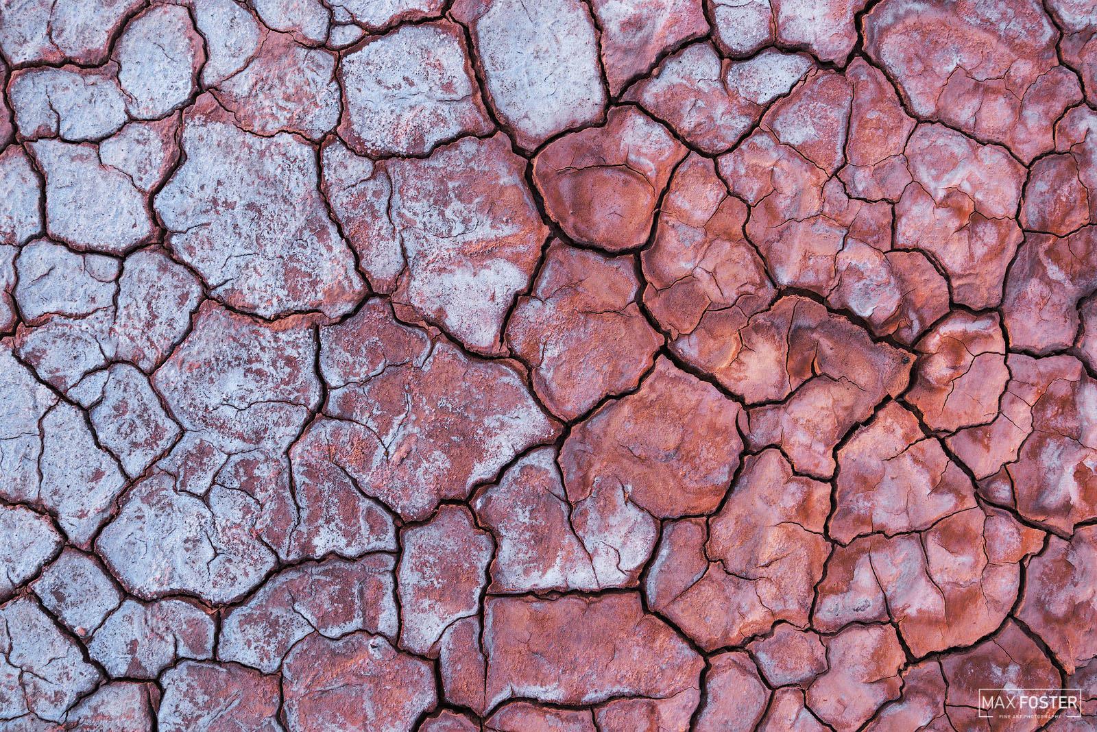 Death Valley National Park, California, Salt of the Earth, Salts, Dry Lake, Mudcracks, Cracked Mud, photo