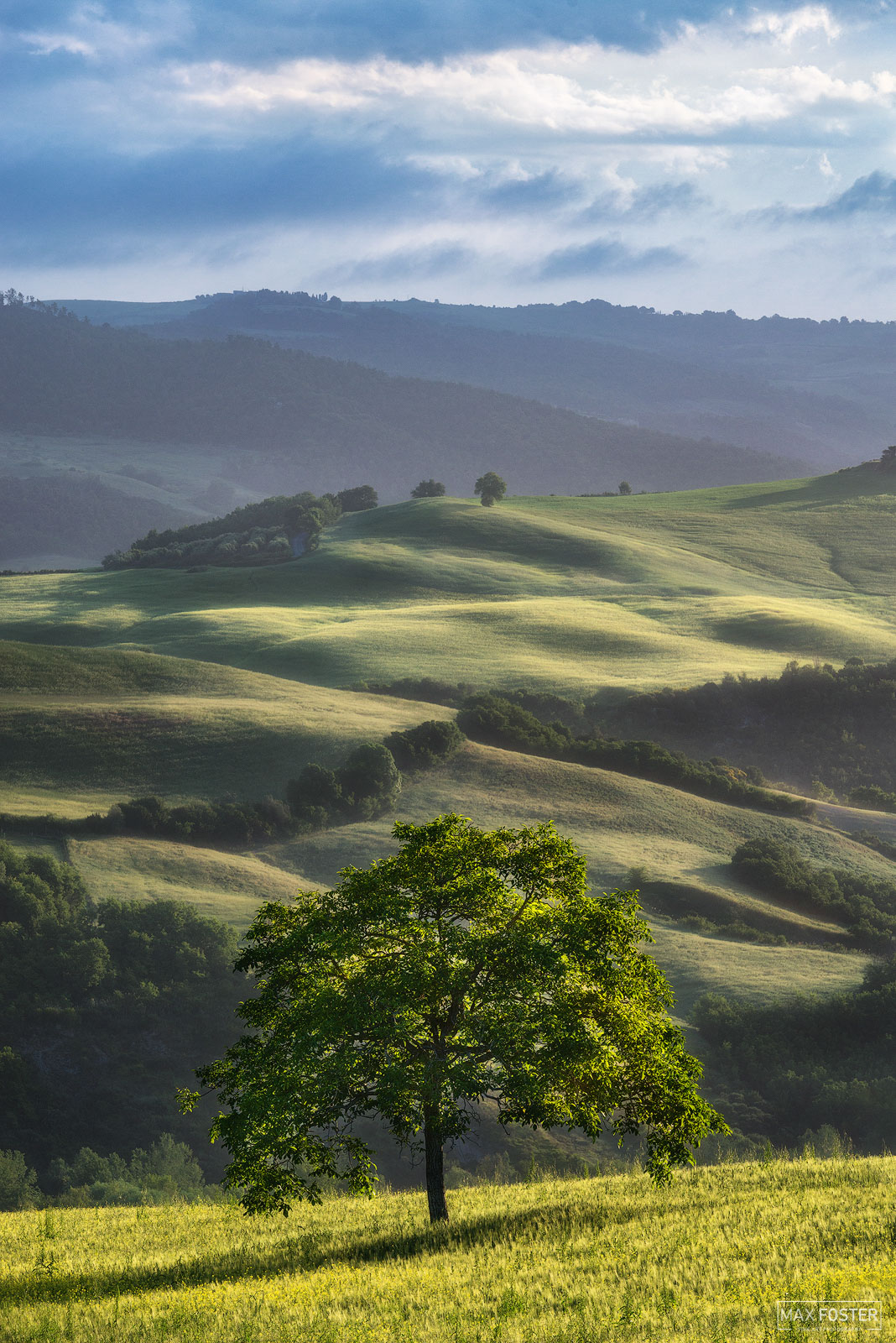 Fine Art Limited Edition of 50 Tuscany is a region in central Italy with an area of about 23,000 square kilometres (8,900 square...