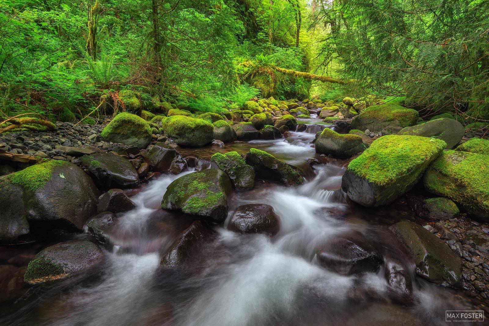 Moffett Creek, Columbia River Gorge, Oregon, photo