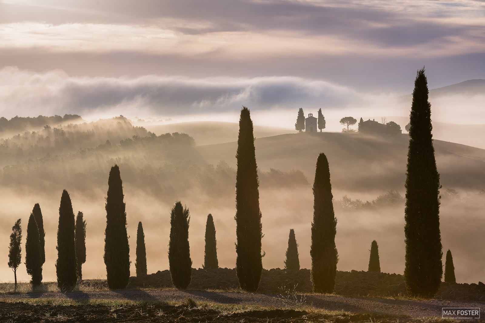 Val d'Orcia, Tuscany, Italy, Tuscan Dream, Tuscan, Dream, Mediterranean Cypress,  Italian Cypress,  Tuscan Cypress, Mediterranean, Cypress, Italian, Trees, photo